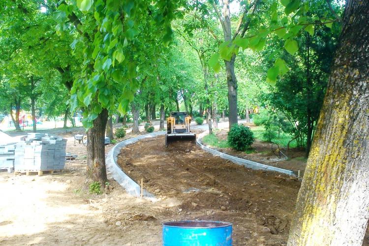 Aleile din Parcul Babeș sunt asfaltate. Copacii au fost tăiați pentru proiectul de reabilitare din bani europeni - FOTO