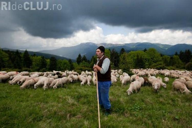 """România, în topul celor mai """"îndrăznețe"""" destinații de vacanță din lume"""
