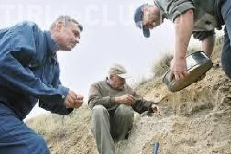 Cercetătorii clujeni au descoperit la Alba fosila unei noi specii de mamifer