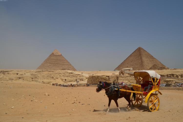 Egiptul, așa cum nu l-ai văzut la știri! O mare care te transpune în Avatar, daca te încumeți să faci scufundări - FOTO REPORTAJ
