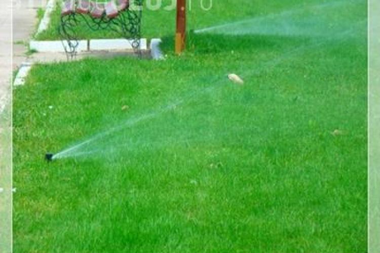 Primăria vrea sisteme de irigație automate pentru spațiile verzi din Cluj. Investiție a fost estimată la 420.000 lei