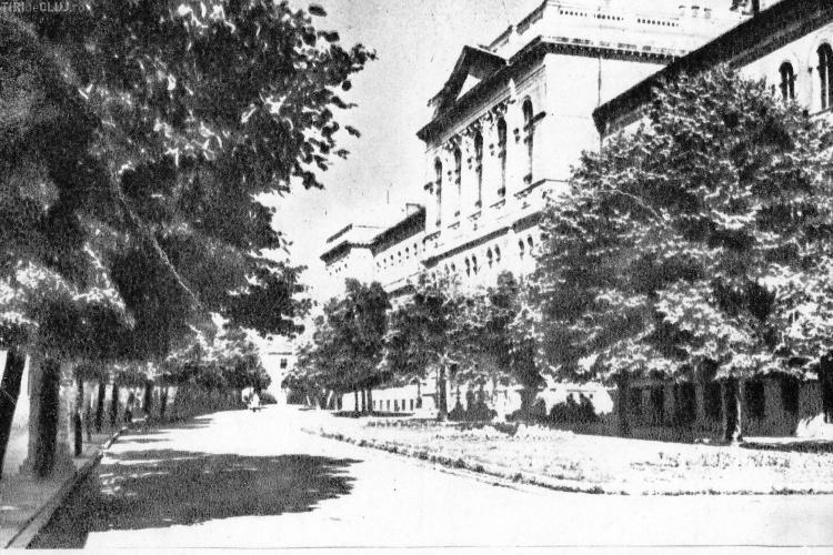 Seri de Vară Clujene pe strada Mihail Kogălniceanu! Istoria străzii este impresionantă - FOTO