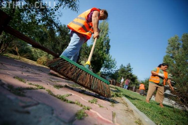 Licitația privind salubrizarea stradală din Cluj a fost ANULATĂ din nou. Ce riscuri sunt?