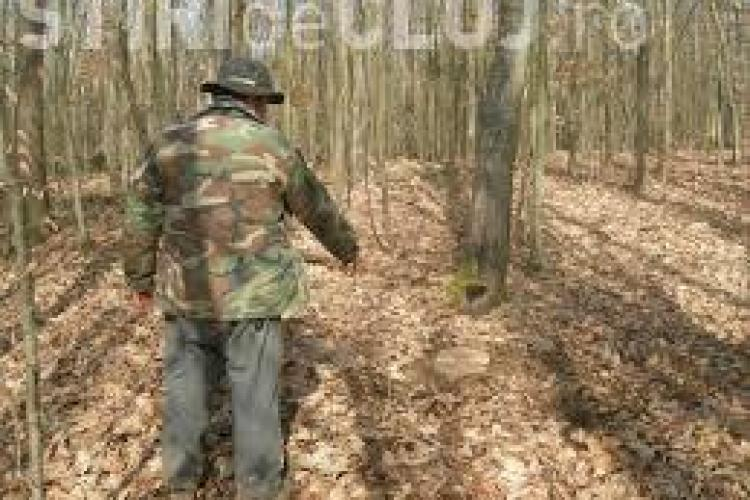 Doi pădurari din Băișoara au fost bătuți de hoții de lemne! Unul și-a dat DEMISIA de frică