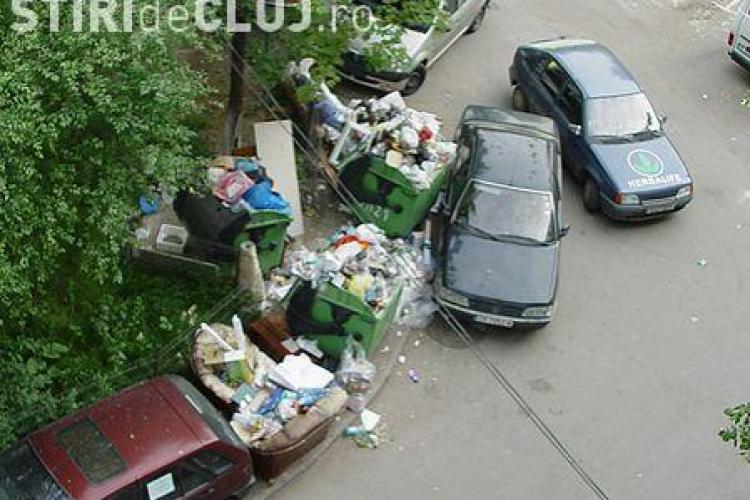 Salubrizarea si deszapezirea din Cluj se scumpesc cu 11,5%