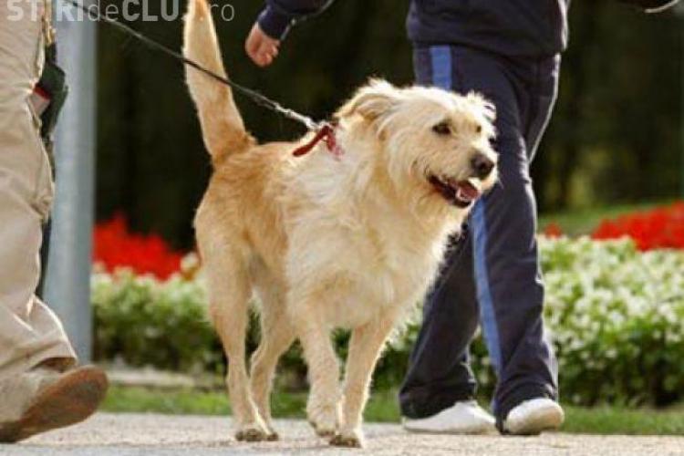 Clujean executat silit pentru că își plimba câinele: N-am avut 5 lei de șpagă