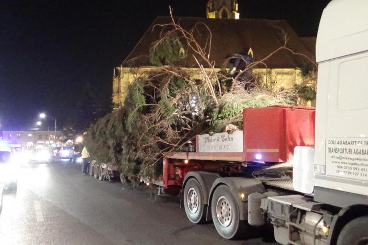 Bradul de Crăciun a fost montat în Piața Unirii. Trecătorii au privit cu EMOȚIE operațiunea - VIDEO
