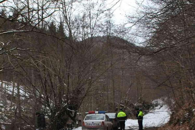Doi clujeni, reținuți de polițiști pentru defrișare ilegală. I-au prins după ce au tăiat peste 70 de copaci FOTO