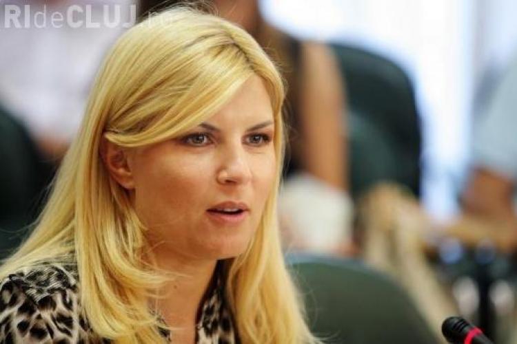 Elena Udrea acuză alți ministri din Guvernul Boc