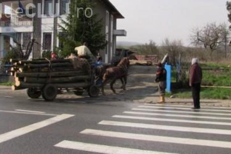 Clujeni prinși cu lemnul furat în căruțe. Au fost opriți de polițiști și duși la secție VIDEO