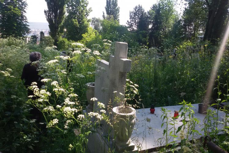 Cimitirul Central este un dezastru, chiar în ziua de Rusalii. Buruienile sunt de înălțimea unui om FOTO