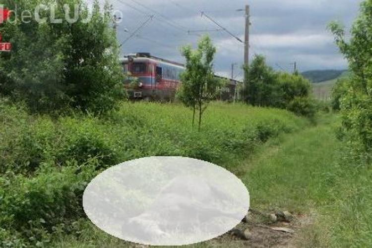 Scenă ORIBILĂ la Gherla! Un cal lăsat nesupravegheat a fost lovit de tren și aruncat câțiva metri mai departe